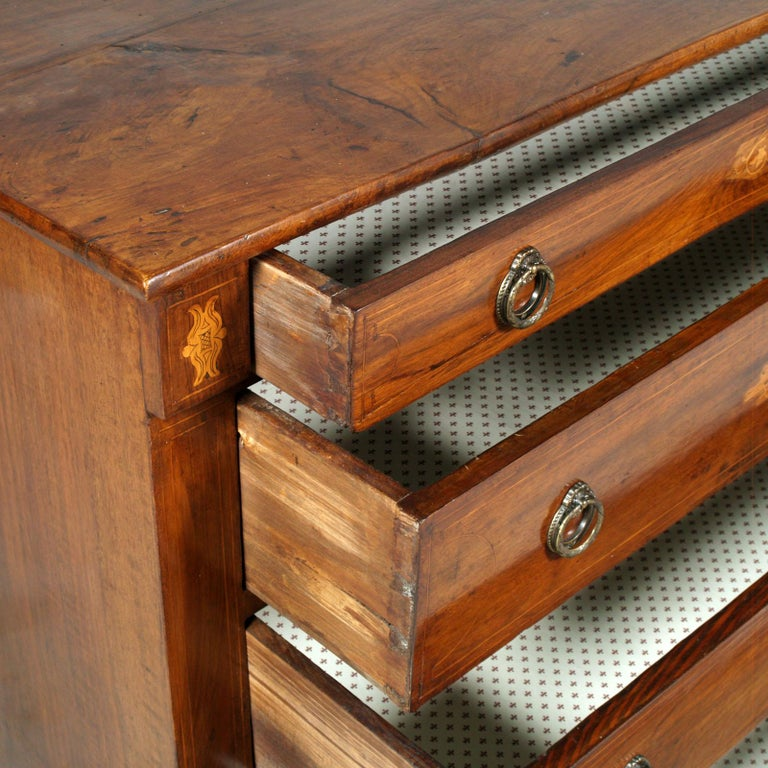 17th Century Lombard-Piedmont Area, Chest of Drawers, Inlaid Walnut Wax-Polished For Sale 4