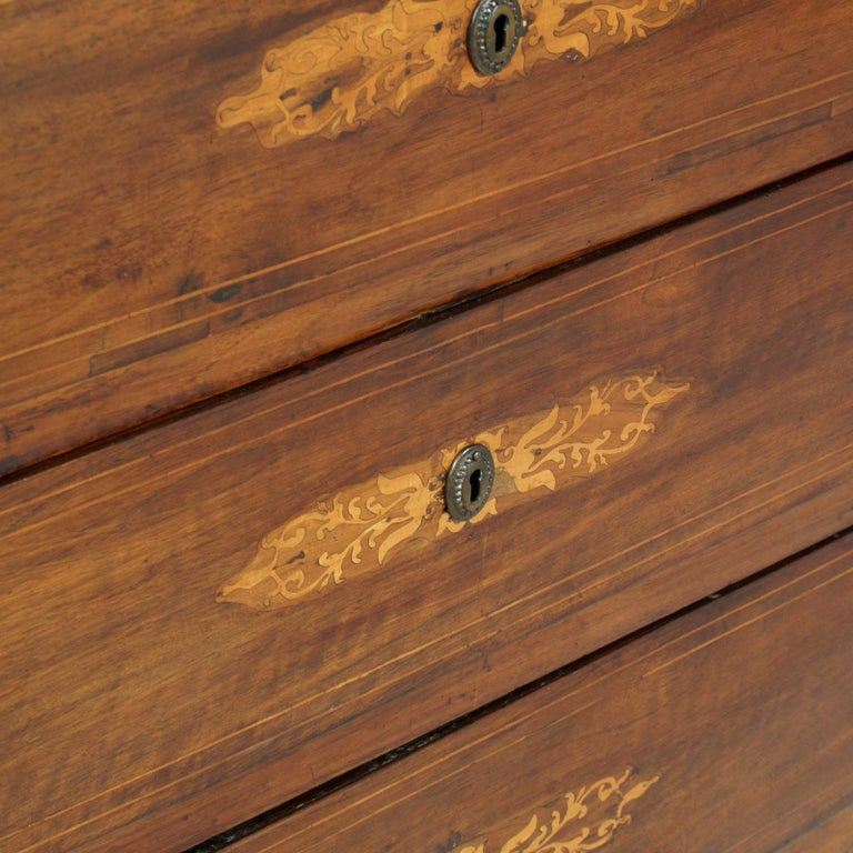 17th Century Lombard-Piedmont Area, Chest of Drawers, Inlaid Walnut Wax-Polished In Good Condition For Sale In Vigonza, Padua