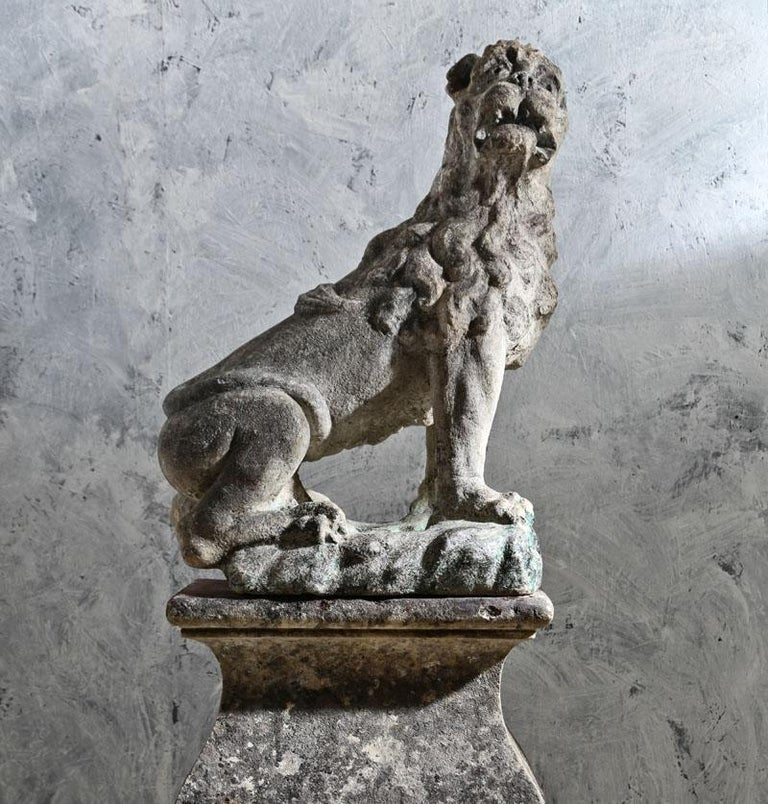 A 17th century French stone carved lion on a 18th century stone base.The lion has a great presence combined with the patina of the stone create a strong figurative statue with good carving on the lion