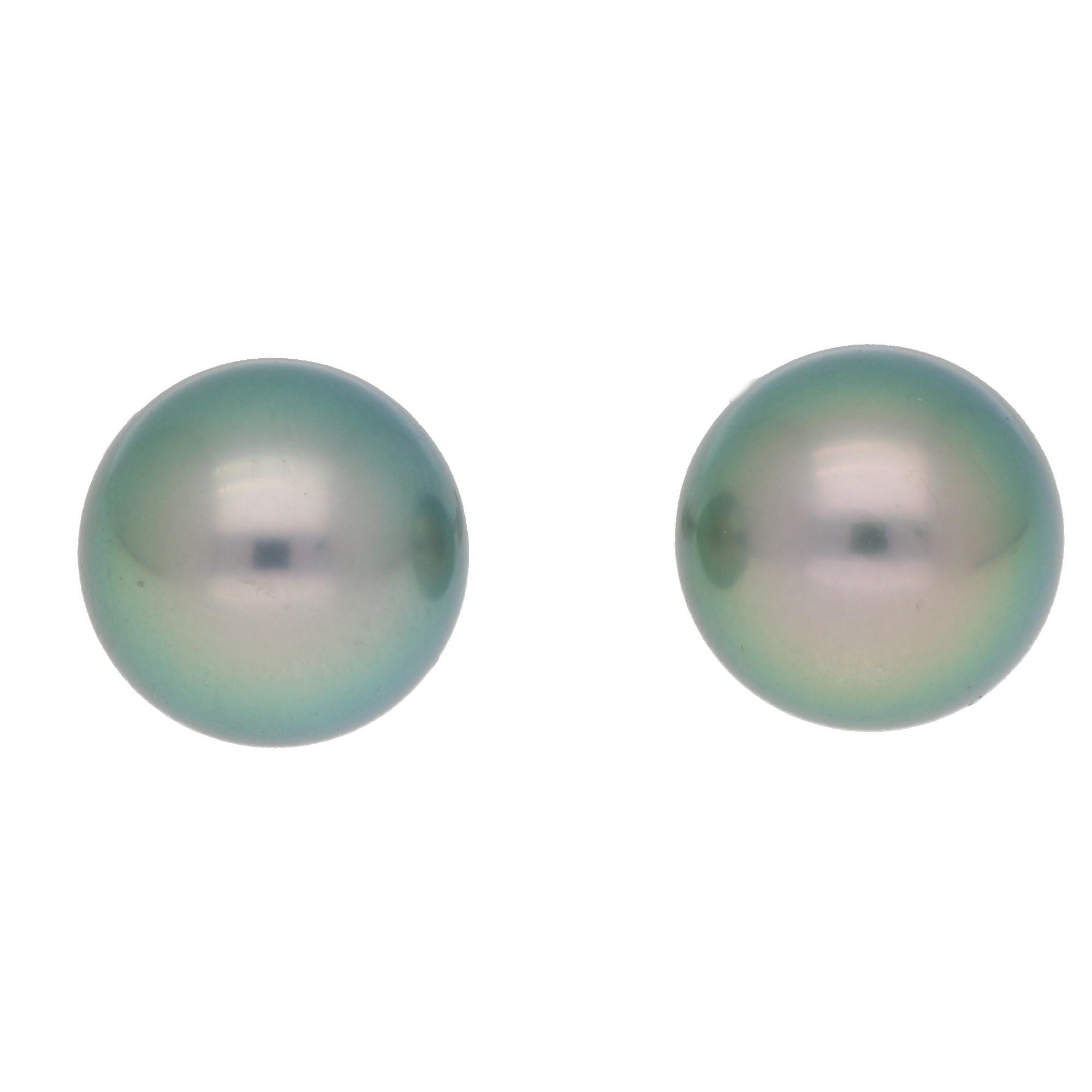 Tahitian Black Pearl Stud Earrings in 18 Karat White Gold