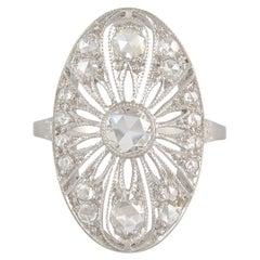 18 Karat White Gold Fluer Diamond Ring
