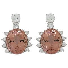 DELFINA DELETTREZ 18 Karat White Gold Morganite Earrings