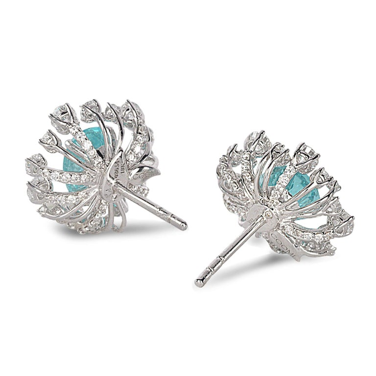 Trinity star burst stud earrings set in 18K white gold with 3.18cts paraiba tourmaline and 1.64cts diamond.