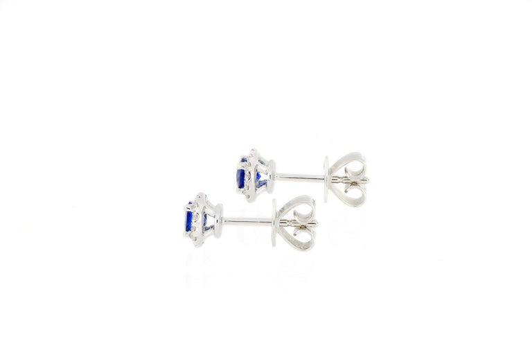 18 Karat White Gold Sapphire and Diamond Earrings In New Condition For Sale In Macau, MO
