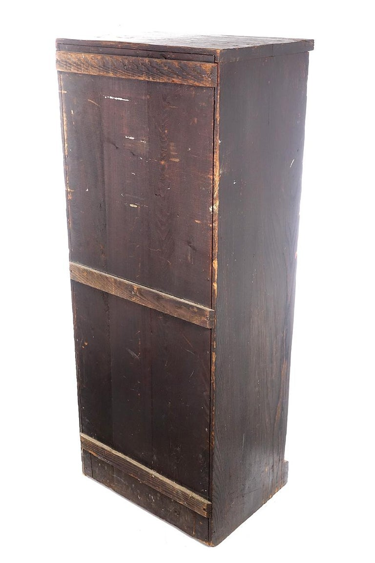 1800s Cabinet of Educational Collections In Good Condition For Sale In Peekskill, NY