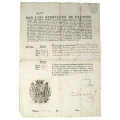 1815 Spanish Passport Hand Written on Paper