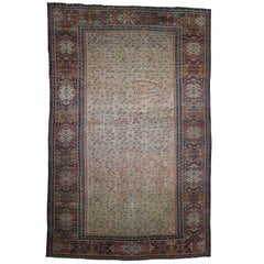 1890 Antique Persian Mahal Rug Fish Design, Camel Field, Wide Border
