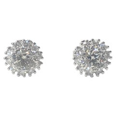 18 Carat White Gold Diamond Cluster Stud Earrings