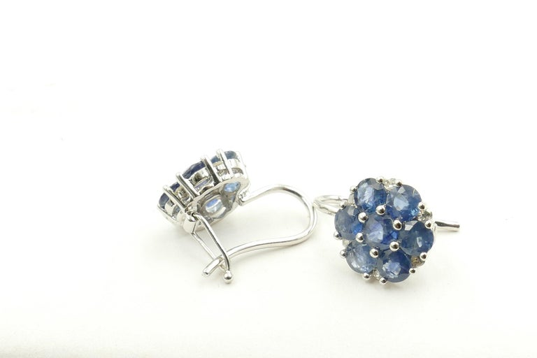 Round Cut 18 Carat White Gold Sapphire and Diamond Earrings For Sale