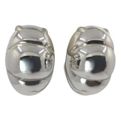18 Karat White Gold Earrings