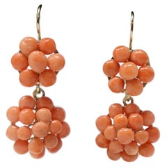 18kt Yelow Gold and Coral Fine Earrings