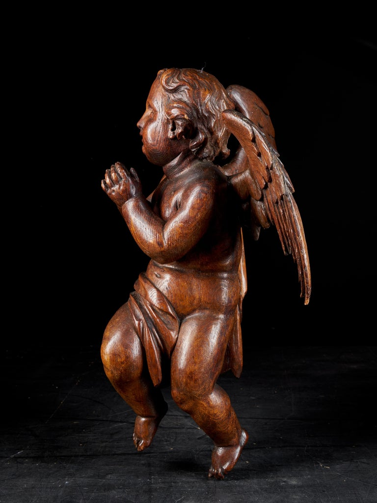 Belgian 18th Century Flemish Shool, Baroque Angel Sculpture or Butti, Carved in Oak For Sale