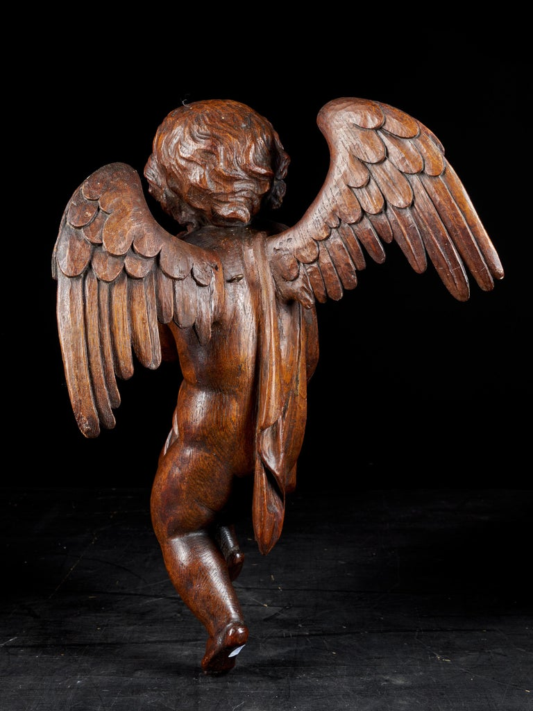 Hand-Carved 18th Century Flemish Shool, Baroque Angel Sculpture or Butti, Carved in Oak For Sale