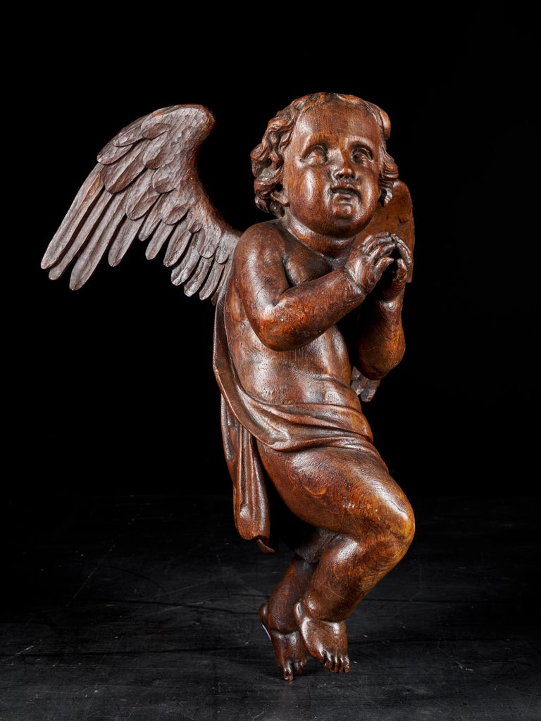 Wood 18th Century Flemish Shool, Baroque Angel Sculpture or Butti, Carved in Oak For Sale