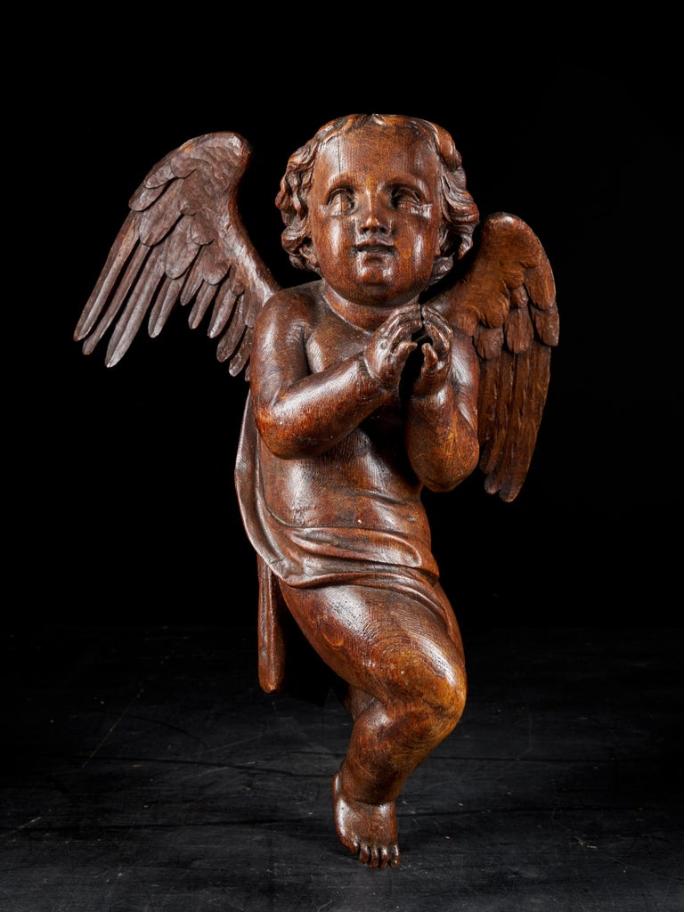 18th Century Flemish Shool, Baroque Angel Sculpture or Butti, Carved in Oak For Sale 1