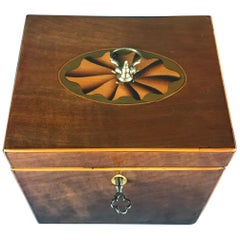 18th Century 1790 Fan Inlaid Harewood Single Tea Caddy