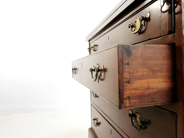 18th Century British Georgian Mahogany Bachelors Chest of Drawers For Sale 1
