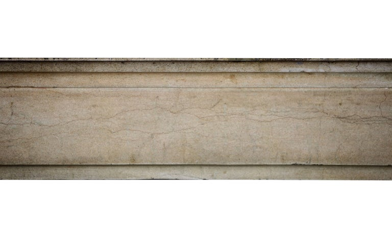 Directoire 18th Century Fine French Classic Antique Fireplace Stone and Marble Surround For Sale