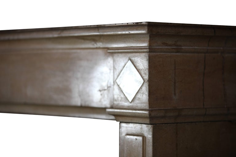 18th Century Fine French Classic Antique Fireplace Stone and Marble Surround For Sale 1