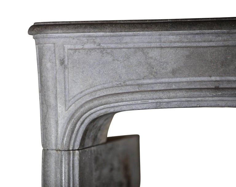 Carved 18th Century French Country Bleu Stone Regency Fireplace Surround For Sale
