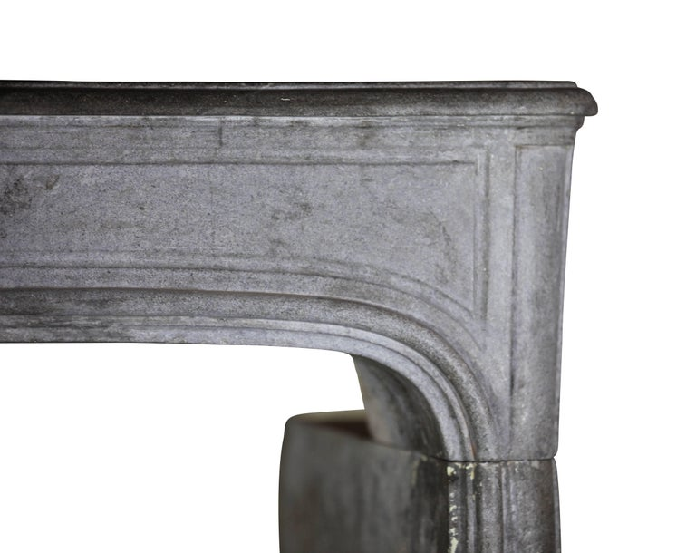 18th Century French Country Bleu Stone Regency Fireplace Surround In Excellent Condition For Sale In Beervelde, BE