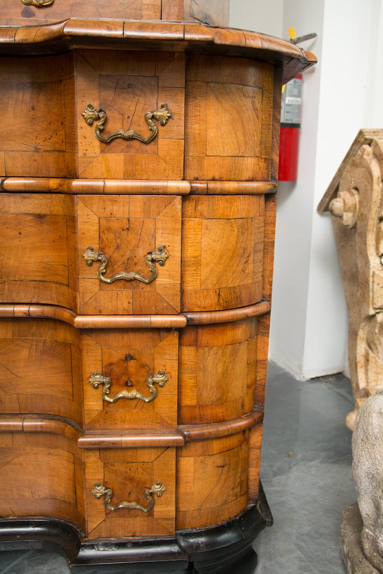 18th Century George I Burled Walnut Double-Dome Cabinet For Sale 1