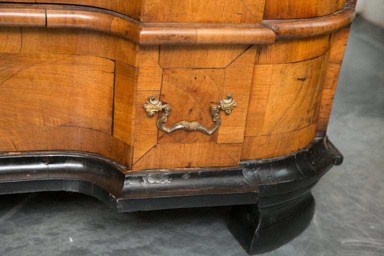 18th Century George I Burled Walnut Double-Dome Cabinet For Sale 3