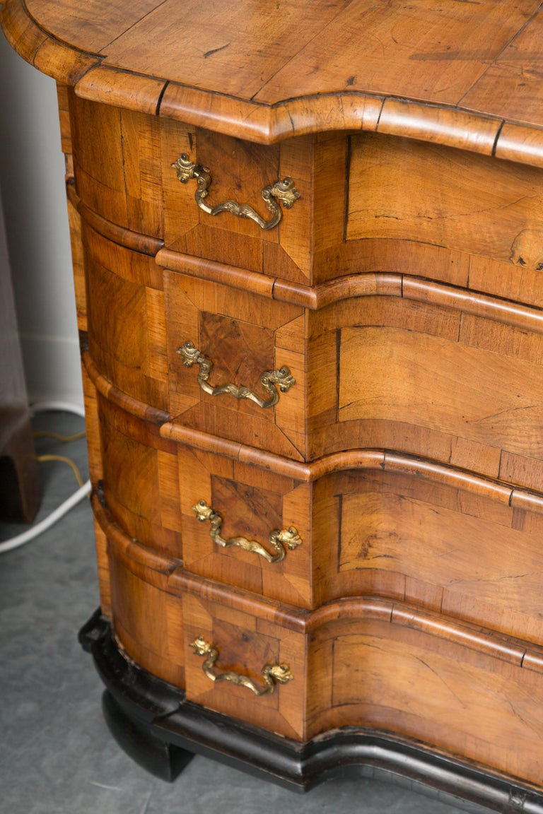 18th Century George I Burled Walnut Double-Dome Cabinet For Sale 4