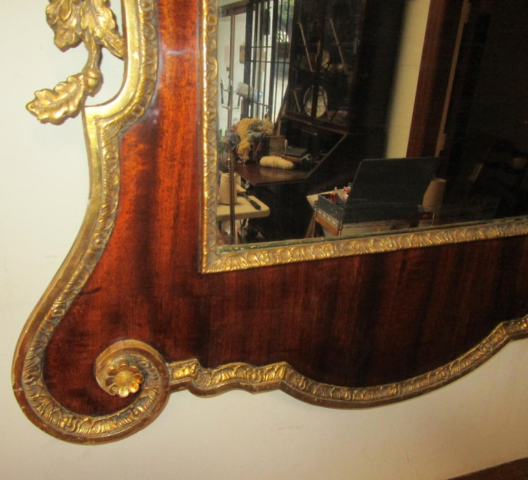 Handsome large size George II period English mirror of beautifully grained mahogany veneers with gilded embellishments. Features includes a broken pediment with center crest and intricate applied gilded foliate side decoration of acorns, oak leaf