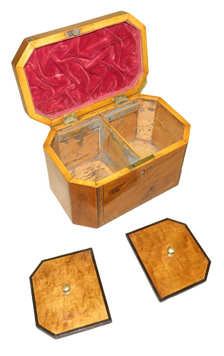 English 18th Century Georgian Yew Wood Octagonal Tea Caddy For Sale