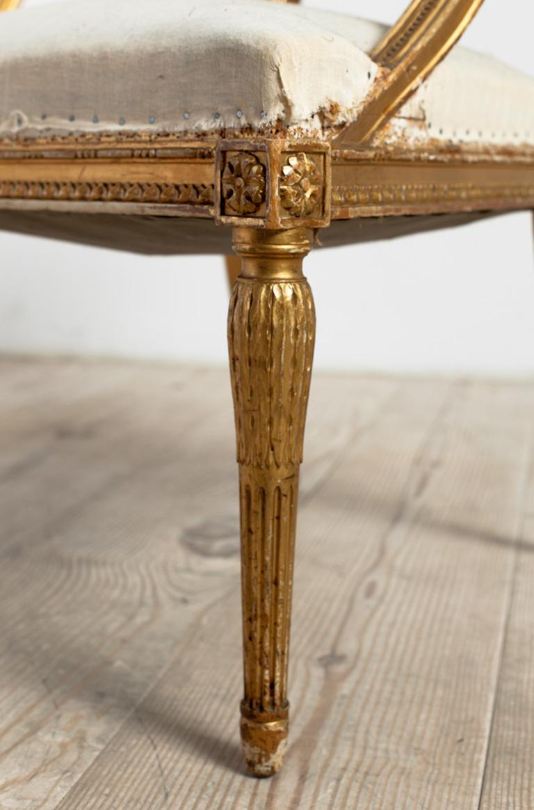 18th Century Giltwood Gustavian Bucket Chairs, Set of 4, Sweden, Circa 1790-1800 For Sale 8