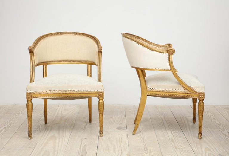 Hand-Carved 18th Century Gilt Wood Gustavian Bucket Armchairs, Set of 4, Swedish, circa 1790 For Sale