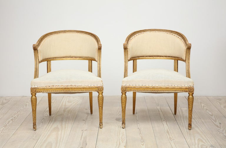 18th Century Giltwood Gustavian Bucket Chairs, Set of 4, Sweden, Circa 1790-1800 For Sale 1