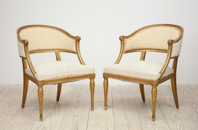 18th Century Giltwood Gustavian Bucket Chairs, Set of 4, Sweden, Circa 1790-1800 For Sale 2