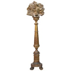 18th Century Italian Altar Stick with a Chesapecten Fossil Shell and Pearls