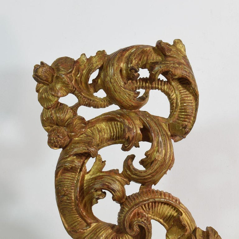 18th Century Italian Giltwood Baroque Curl Ornament For Sale 5