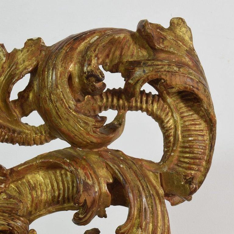 18th Century Italian Giltwood Baroque Curl Ornament For Sale 8