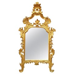 18th Century Italian Louis XV Gilded Mirror Carved Tuscan Mirror from Lucca