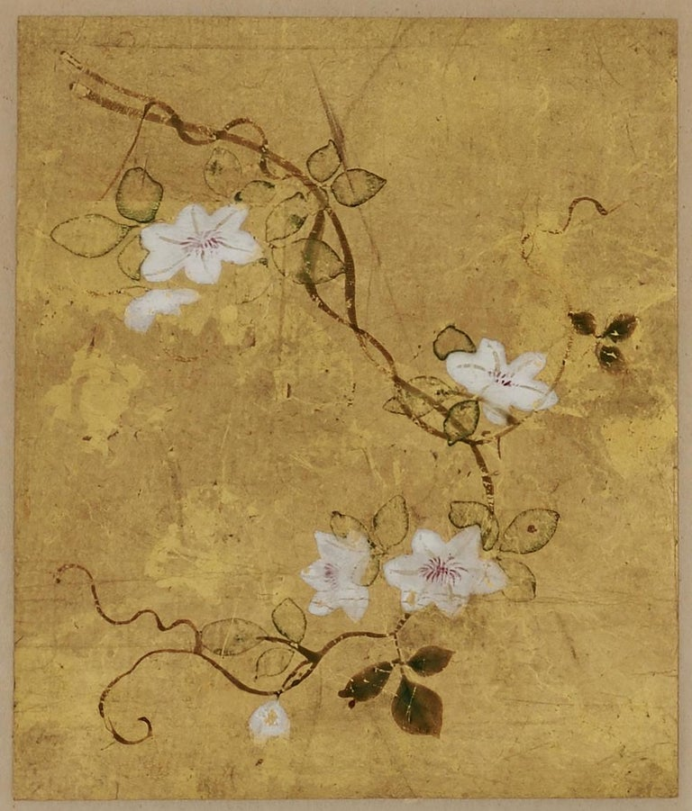 Edo 18th Century Japanese Floral Paintings, Set of 5, Mineral Pigments on Gold Leaf For Sale