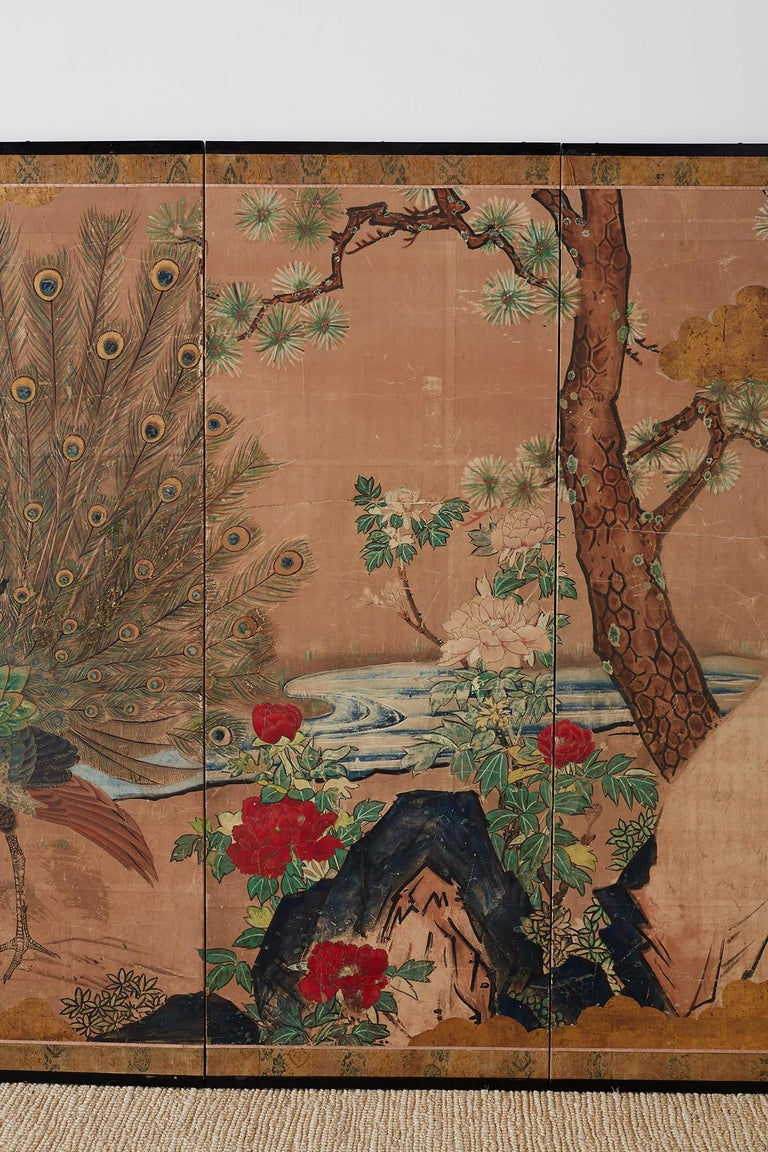 18th Century and Earlier 18th Century Japanese Peacock Screen Kano School For Sale