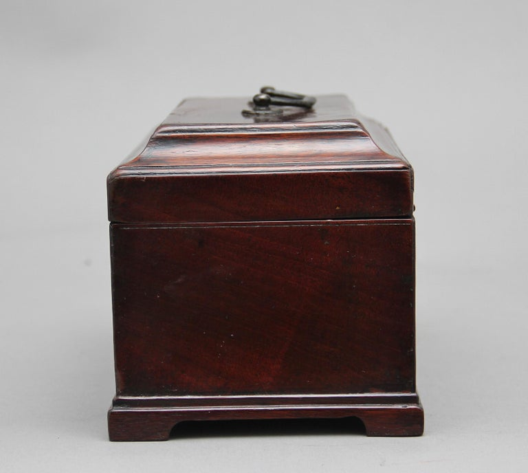 Late 18th Century 18th Century Mahogany Tea Caddy For Sale