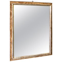 18th Century Mirror with Faux Bois on the Frame, 12-Karat White Gold Details