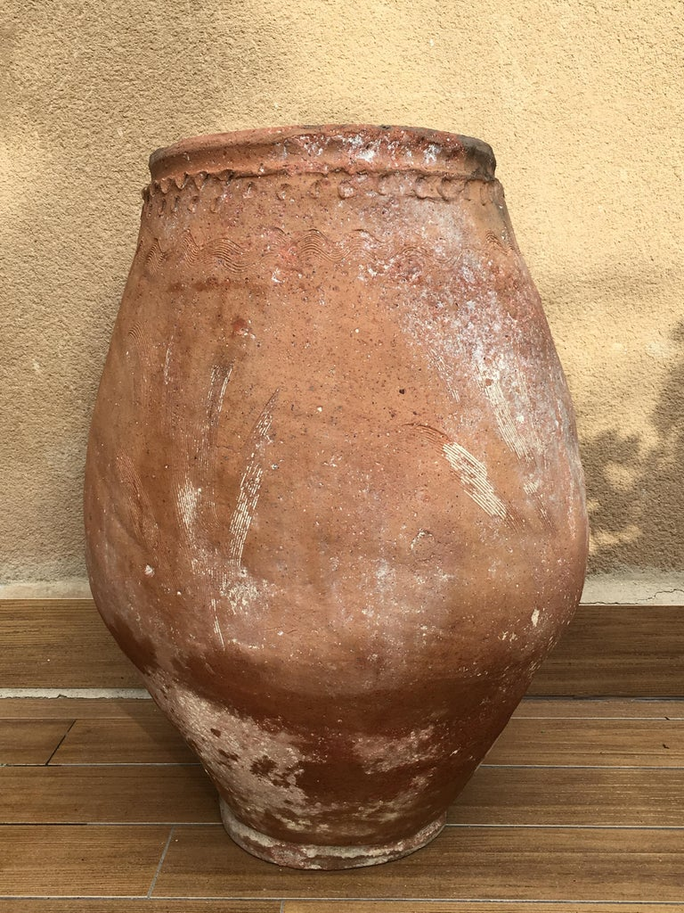Baroque 18th Century Rare Large Terracotta Hand Carved French Biot Pot For Sale