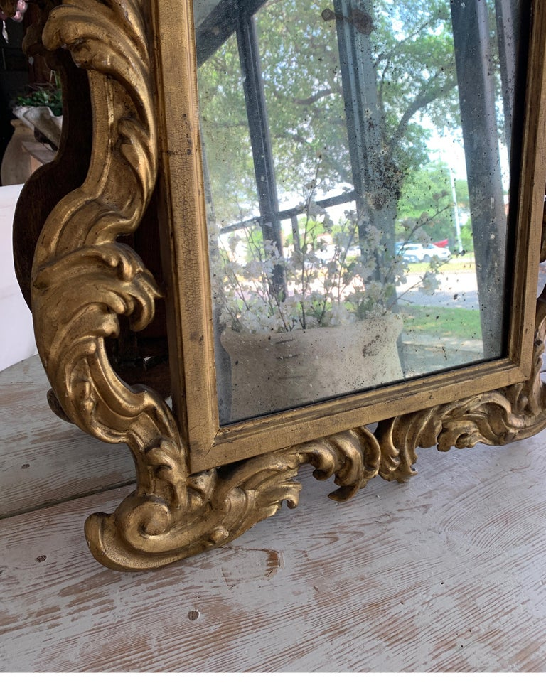 18th Century Rococo Italian Hand Carved Gilt Pair Of Mirrors For Sale 10