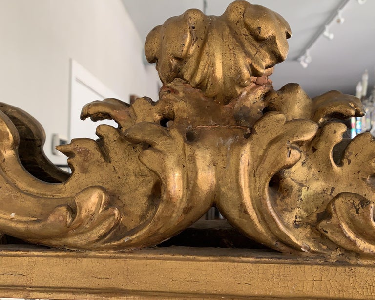 Hand-Carved 18th Century Rococo Italian Hand Carved Gilt Pair Of Mirrors For Sale