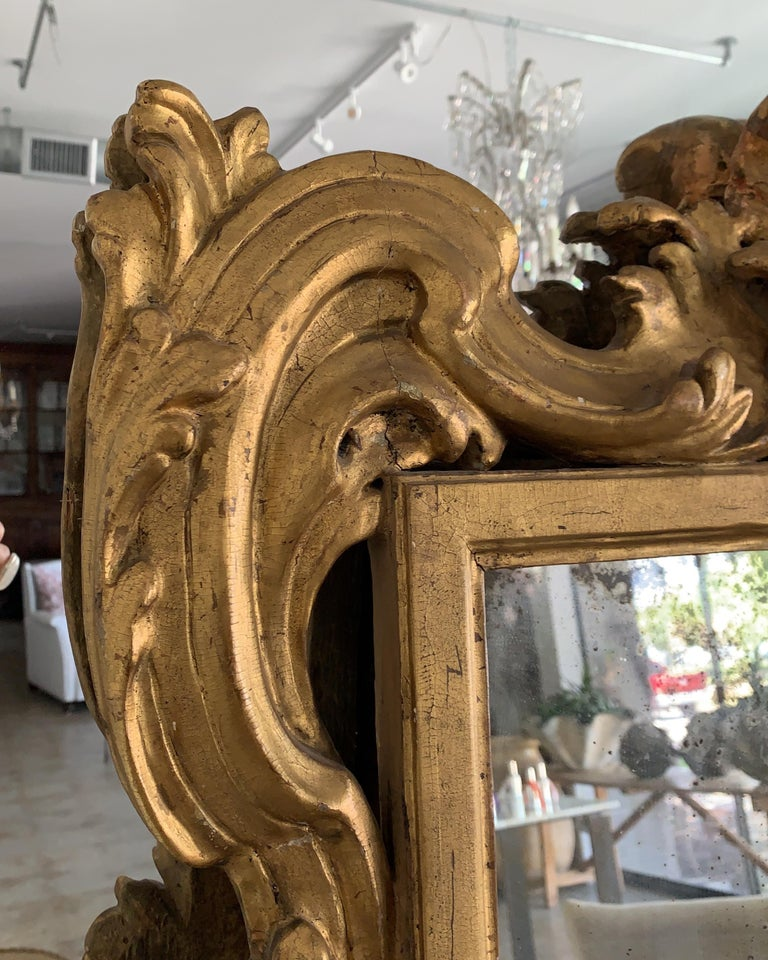 18th Century and Earlier 18th Century Rococo Italian Hand Carved Gilt Pair Of Mirrors For Sale