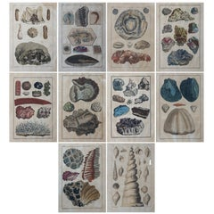 18th Century Set of Ten Hand-Colored Illustrations of Minerals by Joseph Buchoz