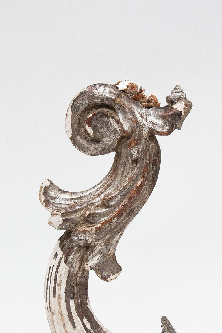 18th century silver scroll Italian fragment decorated silver leaf shells and mica on a mica mineral base.