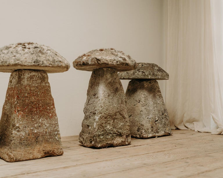 18th Century Staddle Stones For Sale 5