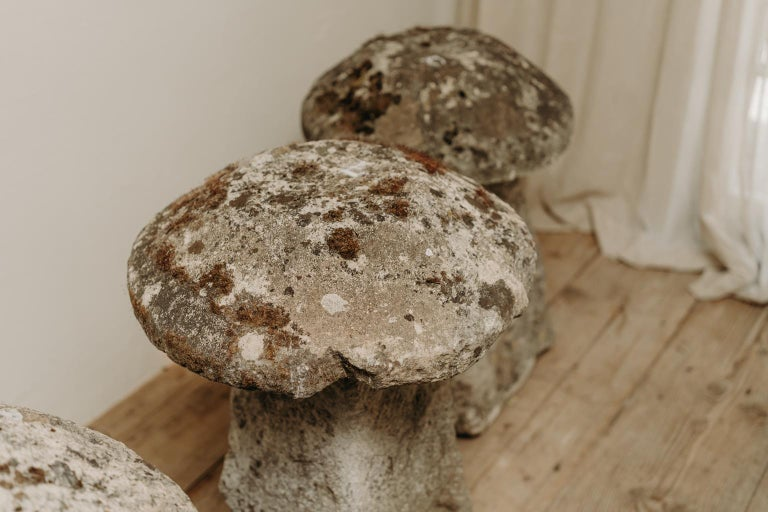 18th Century Staddle Stones For Sale 1
